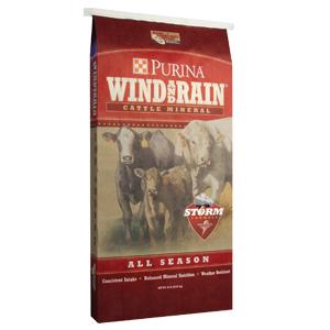 WindAndRainAllSeason1.jpg
