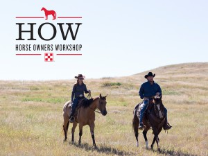 Horse Owners Workshop