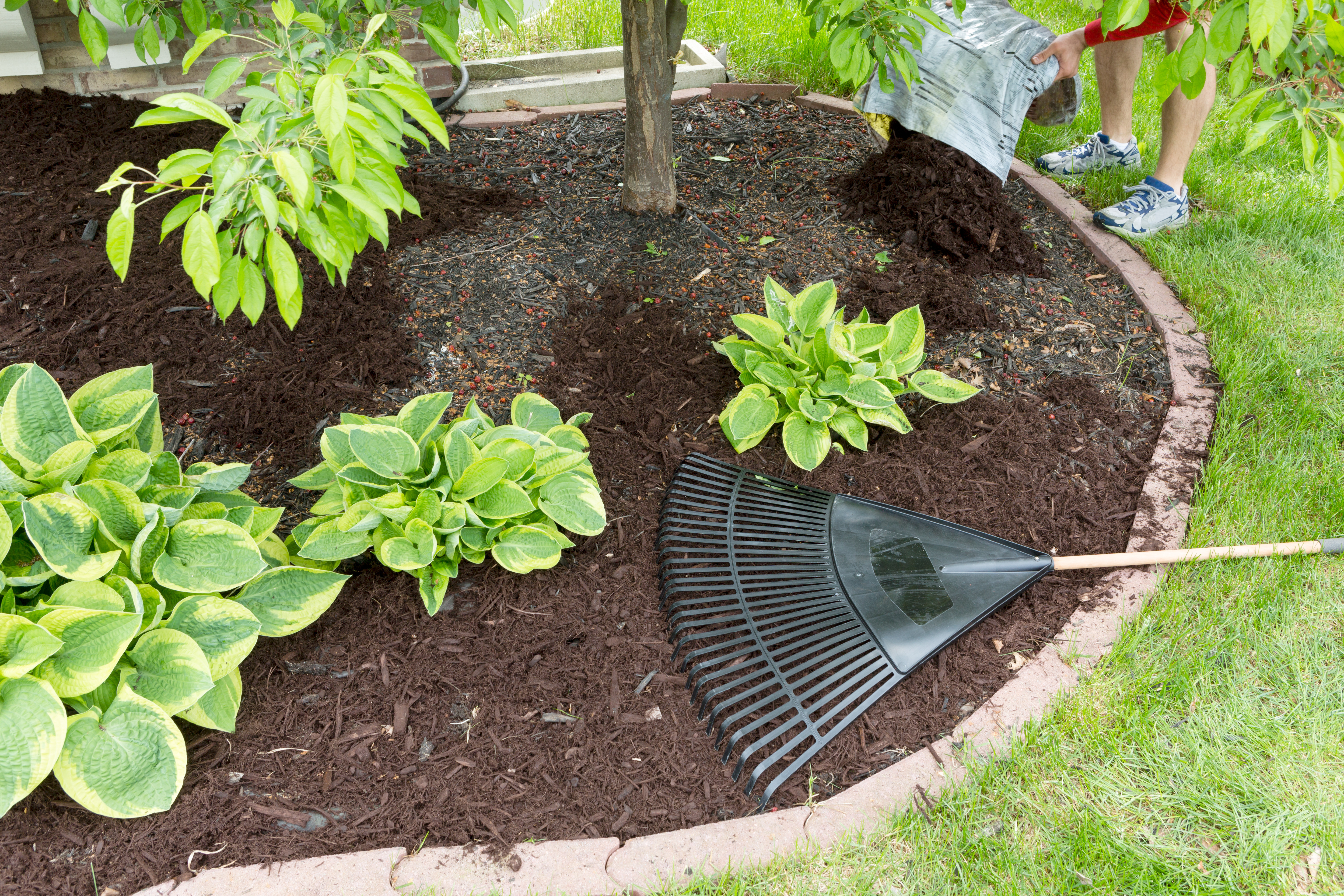 all your year basic home tips mulch secret and fresh money save garden gardening view that every time add to
