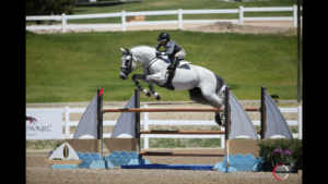 StoryBook Sport Horses