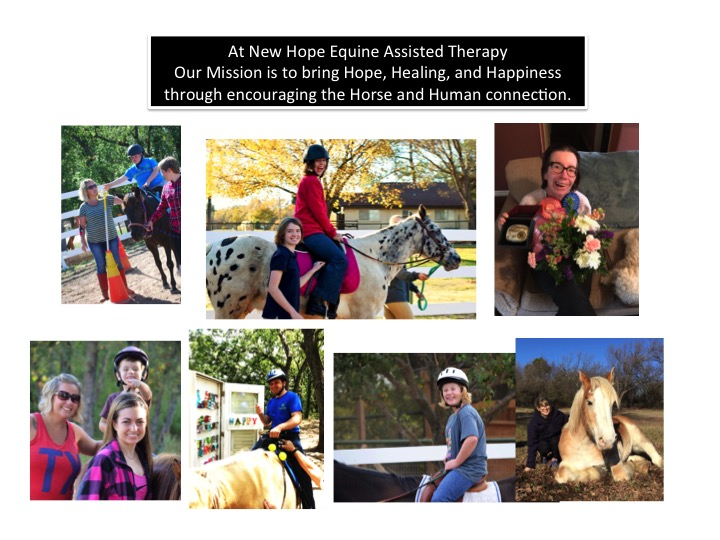 New Hope Equine Assisted Therapy