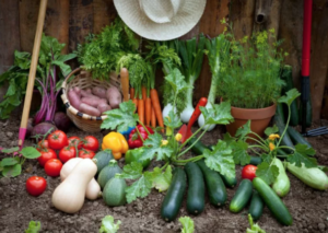 April Garden Tips | Argyle Feed Store