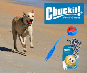 Chuck It Dog Toys Sale | Argyle Feed Store