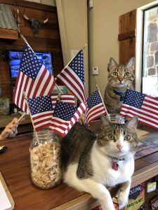 American Flags | Argyle Feed Store