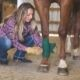 Equine Health Supplies category showing woman wrapping horse's leg with green tape