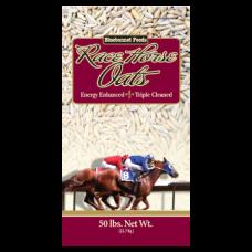 Bluebonnet Race Horse Oats
