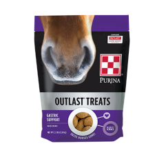 Purina Outlast Horse Treats