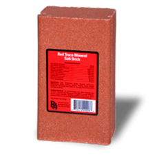 Roto Red Trace Mineral Salt Block