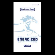 Bluebonnet Energized Performance Horse Feed