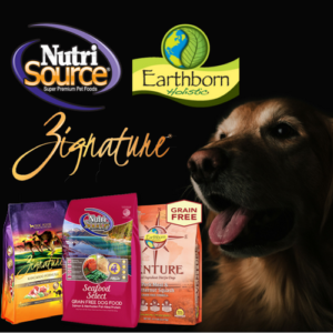 3 New Dog Food Brands