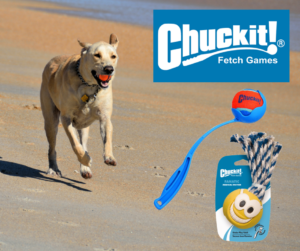 Chuck It Dog Toys Sale | Argyle Feed Store