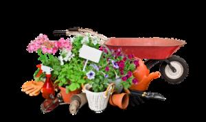 September Gardening Tips | Argyle Feed Store