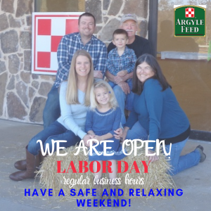 Open Labor Day